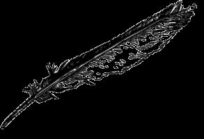 aleksandra sztorc logo